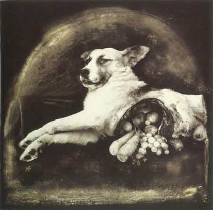 « The Result of War: Cornucopian Dog » (1984)