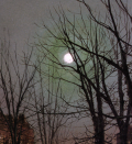 John Atkinson Grimshaw - Détail de Moonlight