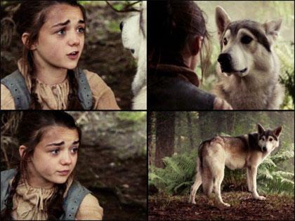 Arya Stark chasse Nymeria pour lui sauver la vie