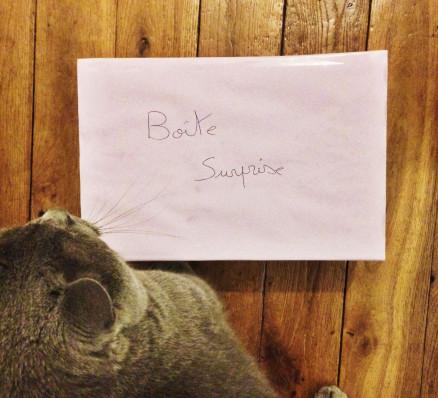 Boîte surprise