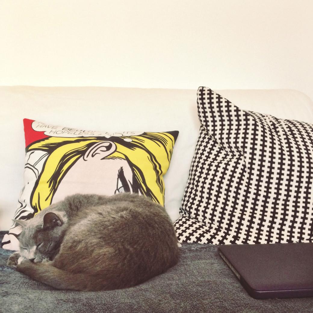 Le chat valide notre nouveau canapé