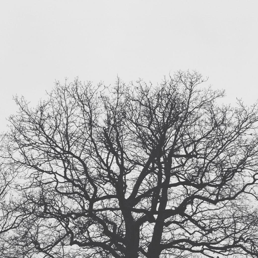 Impression noir et blanc