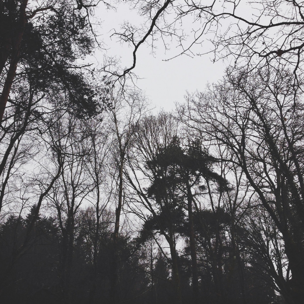 Belles ténèbres