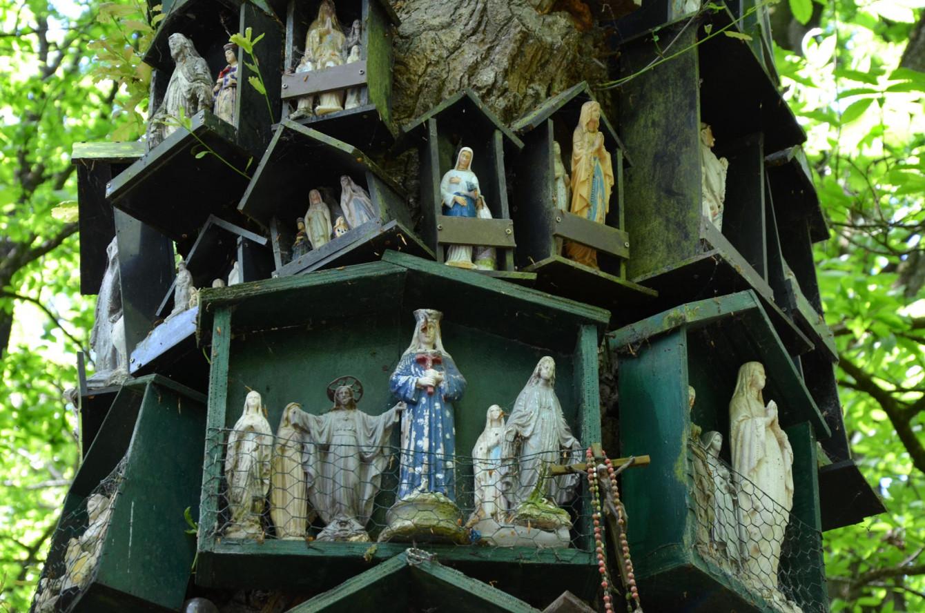 Le Chêne à la Vierge