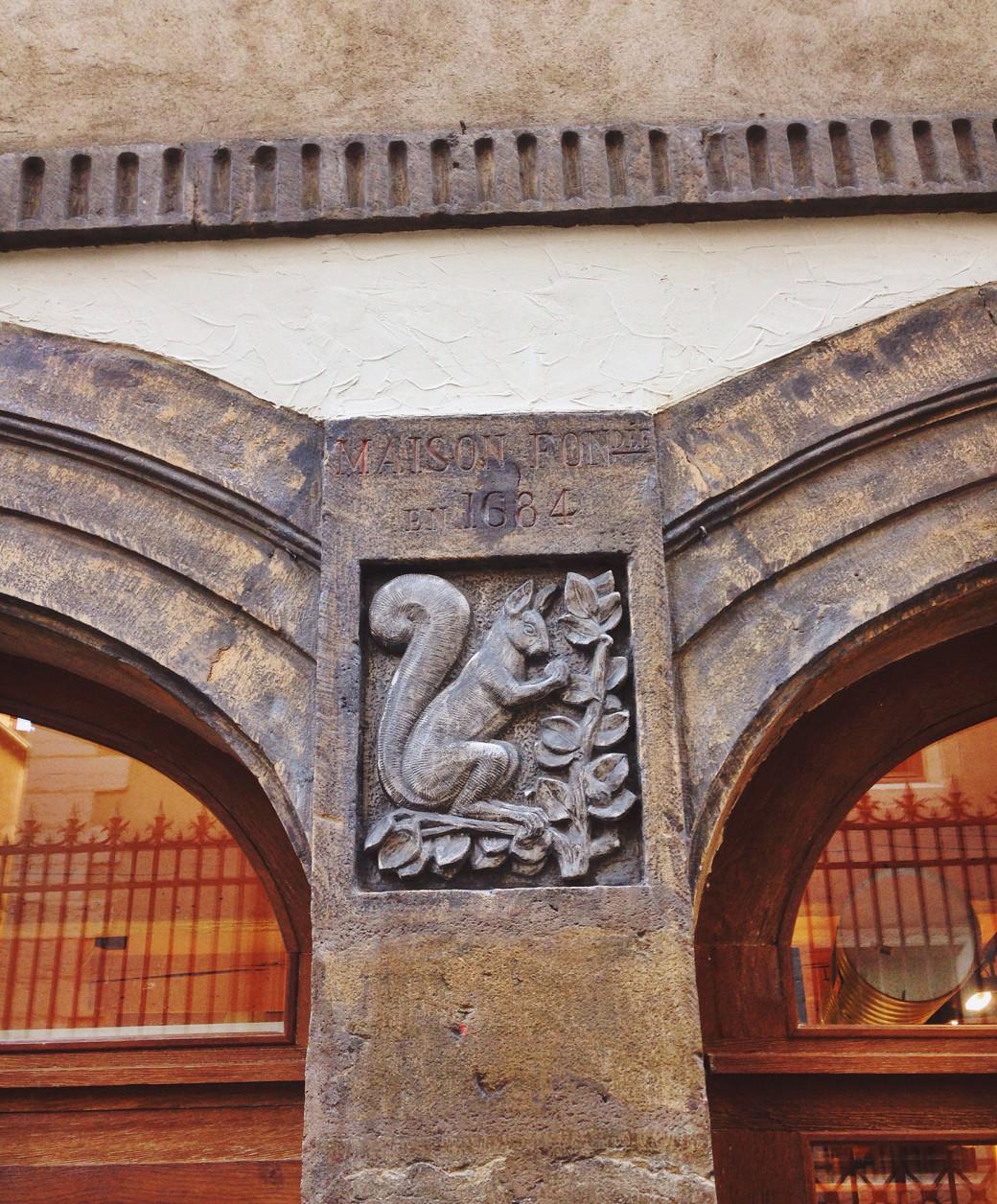 Joli petit écureuil croisé dans le vieux Lyon