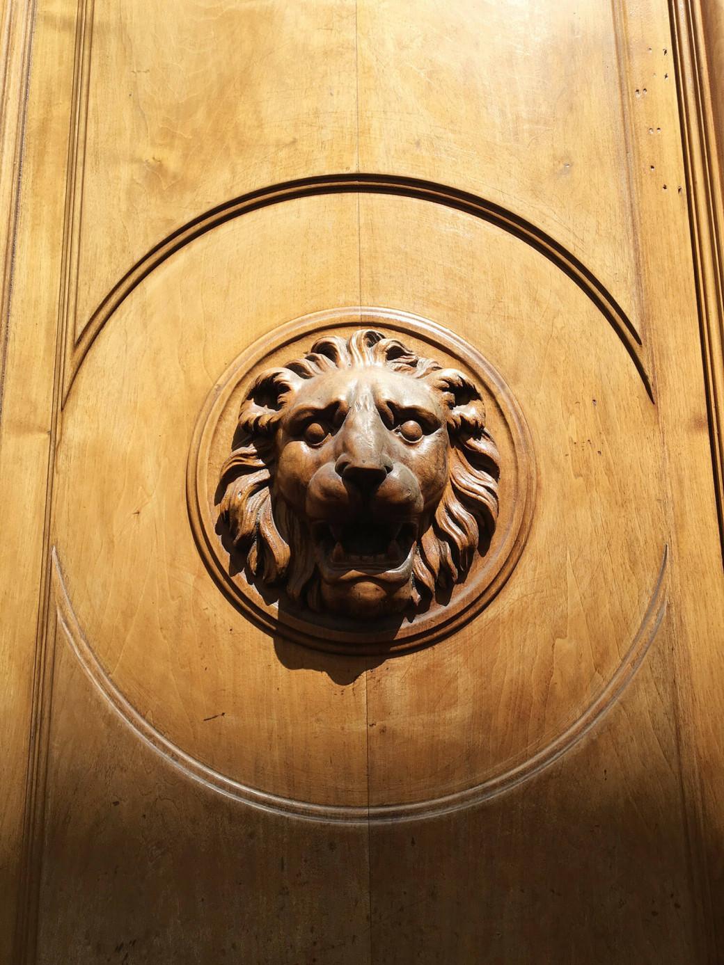 Lion de Lyon