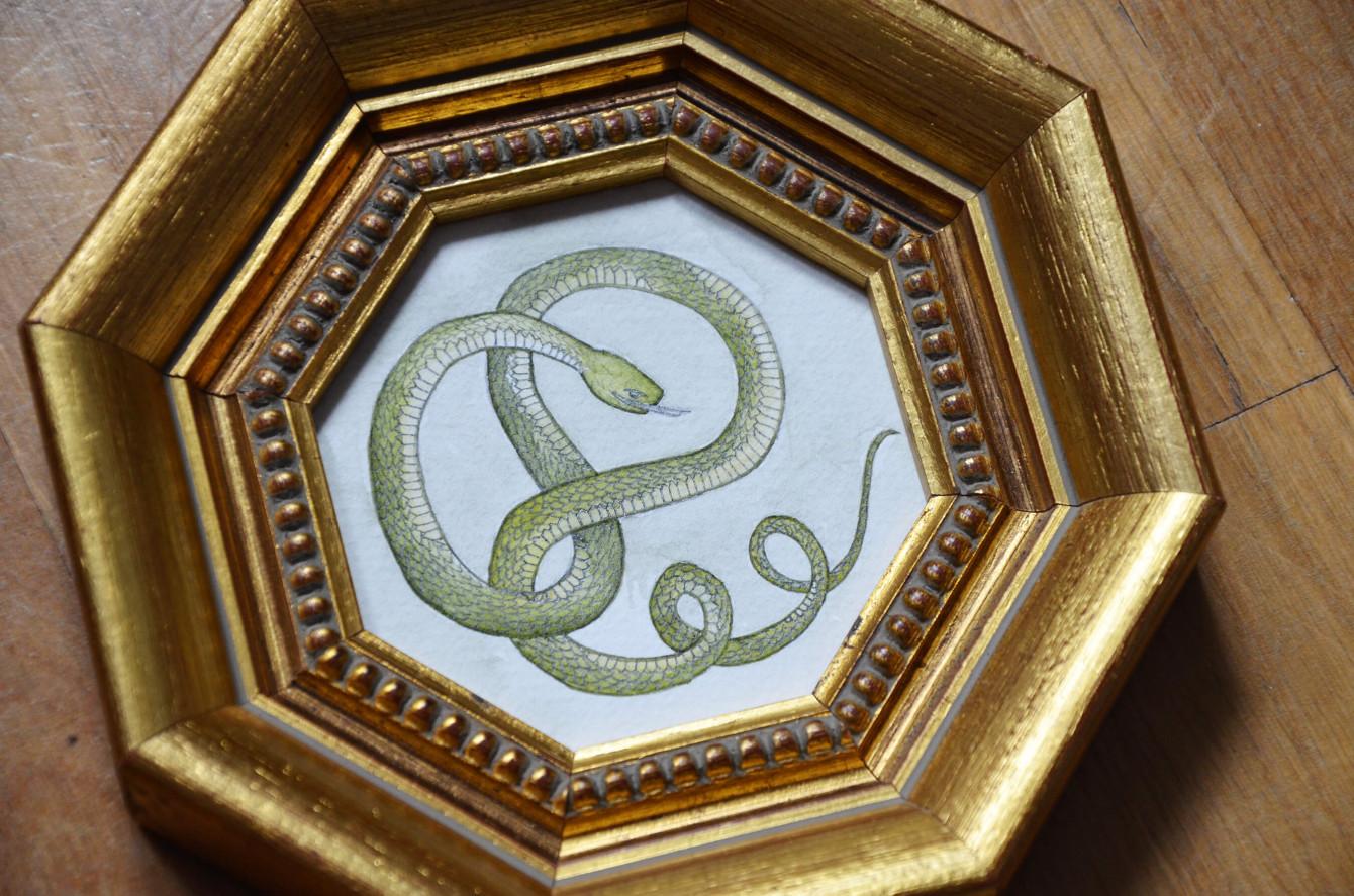 Serpent (5)