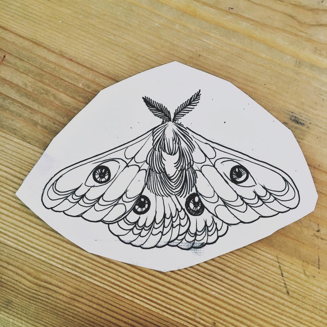 Le petit paon de nuit dessiné par Juliette