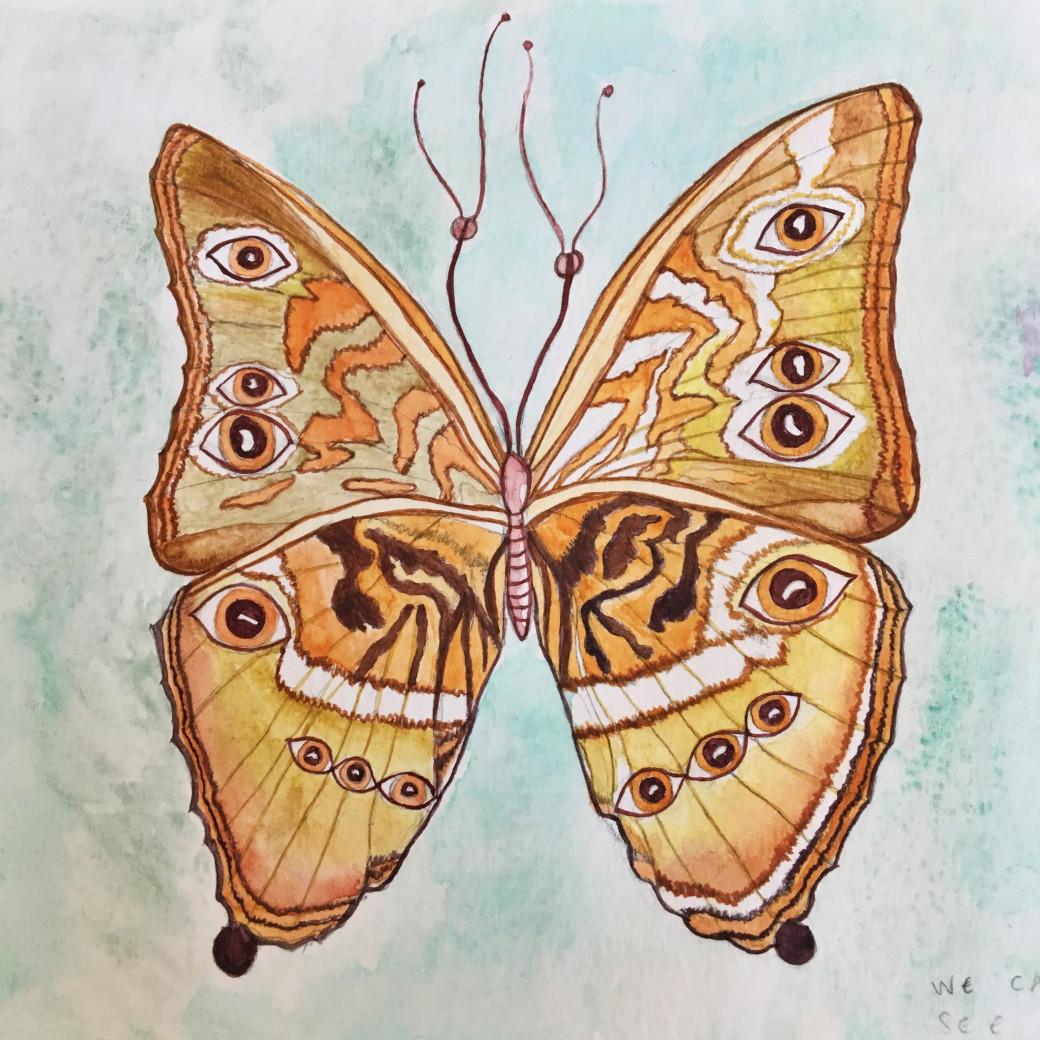 Un de mes papillons-à-yeux
