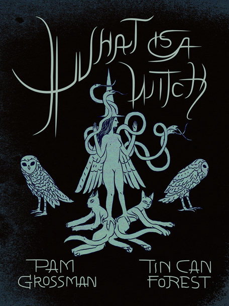 Livre «What Is a Witch» par Tin Can Forest