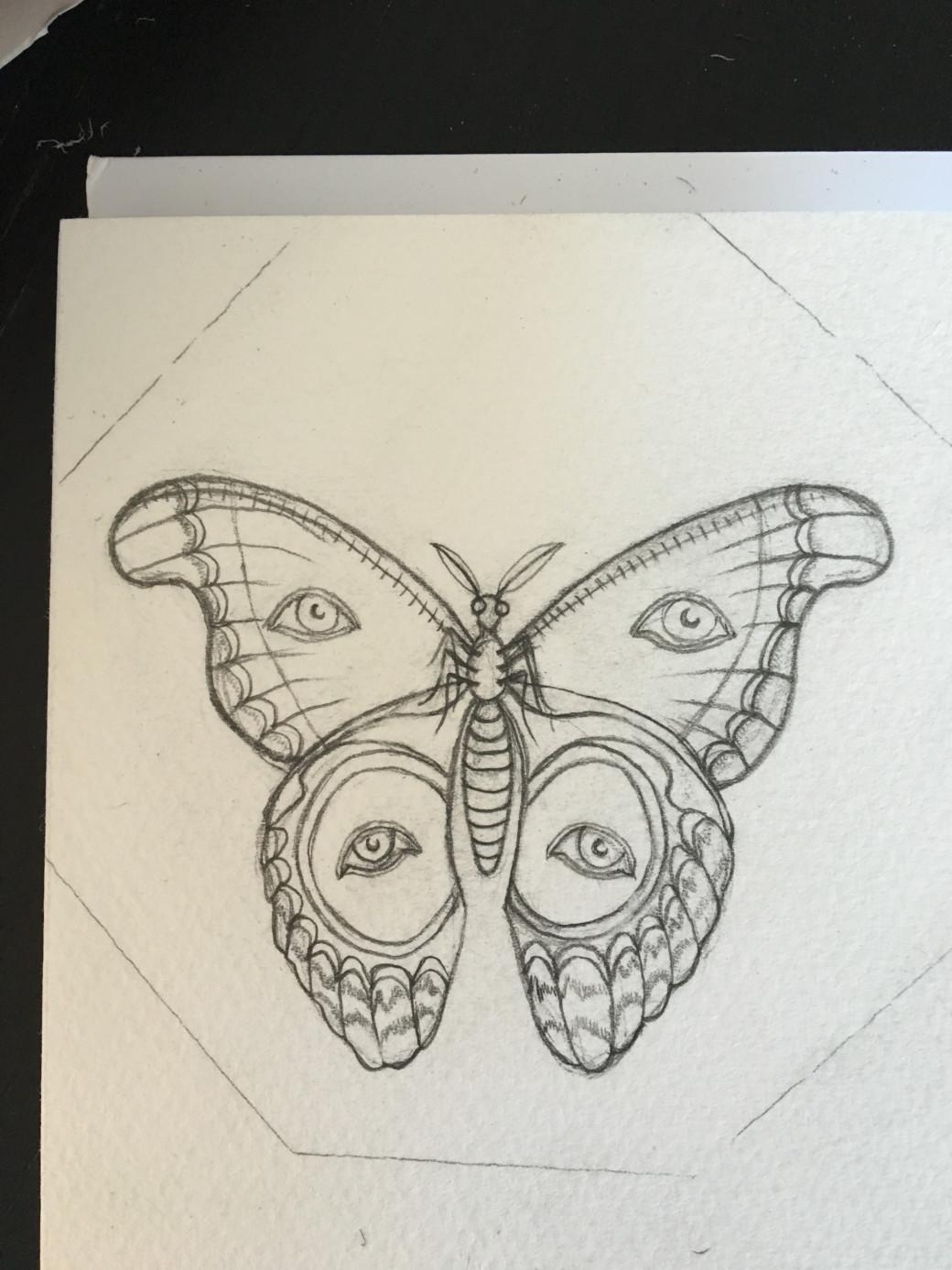 Papillon (2)
