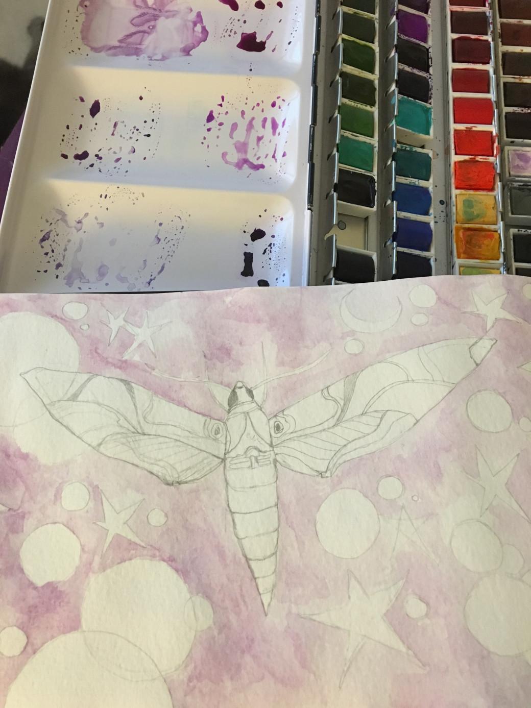 Papillon de nuit (1)