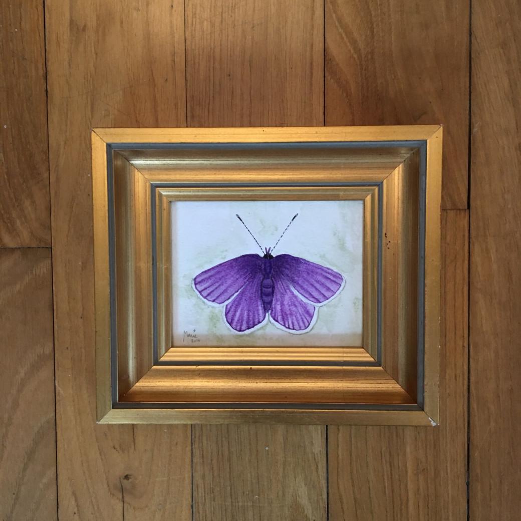 Papillon violet (2)