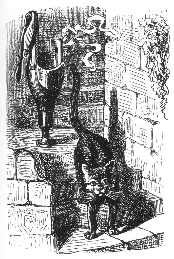 Le chat noir et la jambe de bois du comte de Combourg