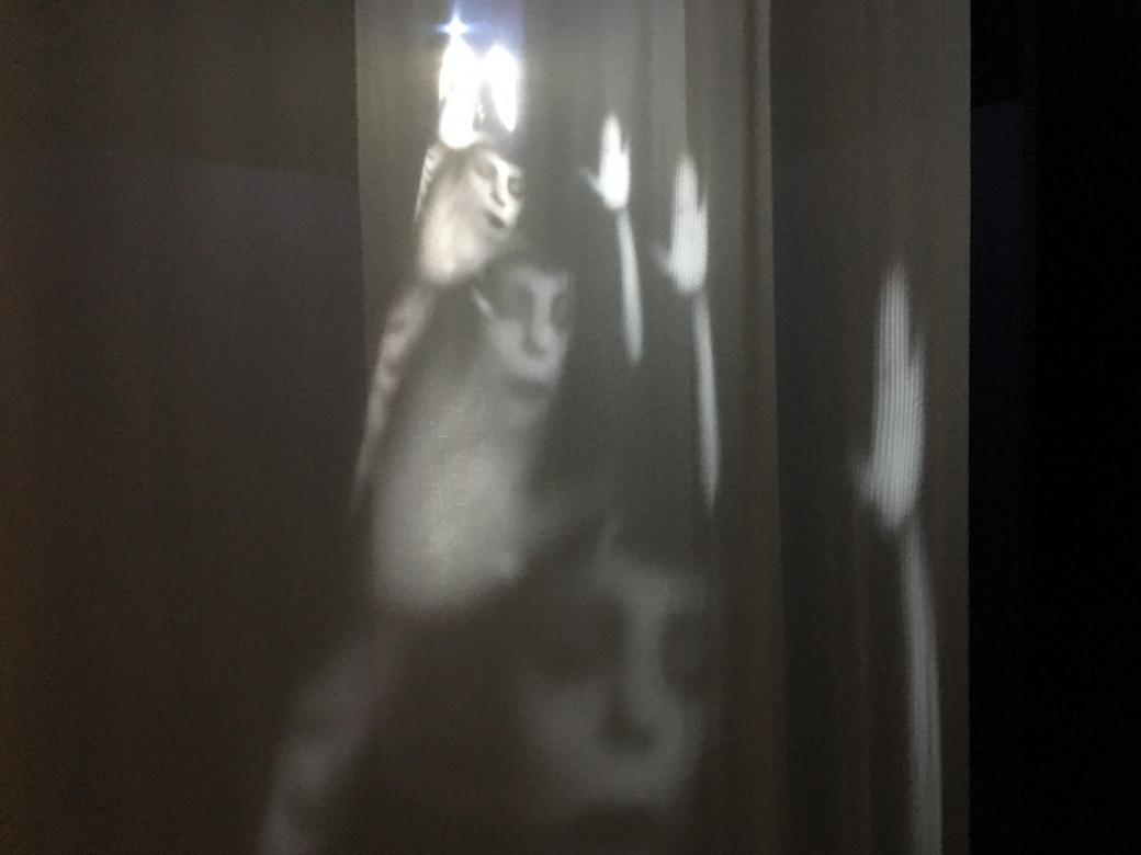 Projection sur tissu sur le thème de la sorcellerie