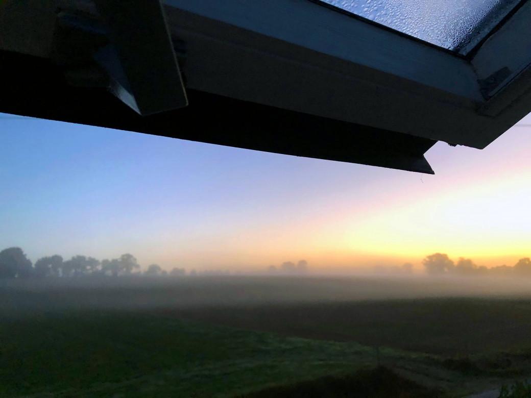 Velux avec vue sur le champ voisin au petit matin